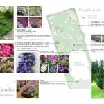 pierwsze-zmiany-projekt-przebudowy-ogrodu-przydomowego-Lublin-Weglin-zielone-studio