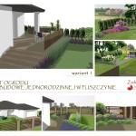 projekt-ogrodu-przydomowego-Pliszczyn-wariant1-zielone-studio