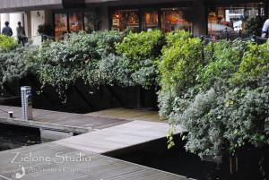 zielone-studio-inspiracje-angielskie-ogrody-nasadzenia-01
