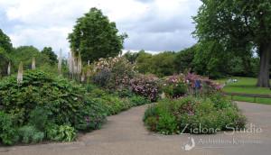 zielone-studio-inspiracje-angielskie-ogrody-nasadzenia-19