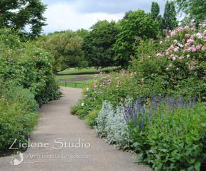 zielone-studio-inspiracje-angielskie-ogrody-nasadzenia-23