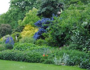 zielone-studio-inspiracje-angielskie-ogrody-nasadzenia-27