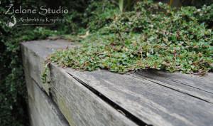 zielone-studio-inspiracje-angielskie-ogrody-nasadzenia-35