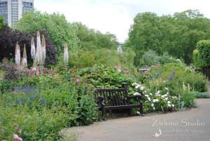 zielone-studio-inspiracje-angielskie-ogrody-nasadzenia-54